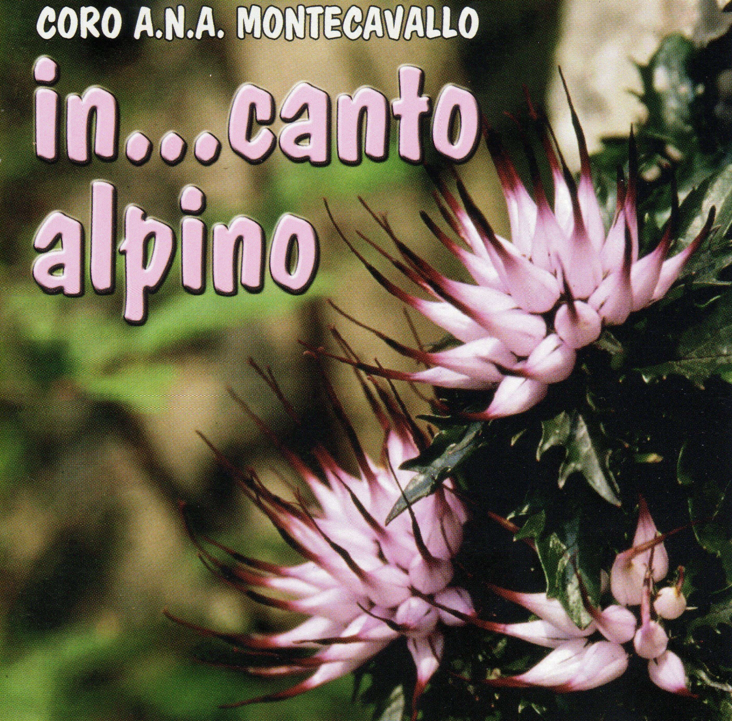 CD3 in...canto alpino